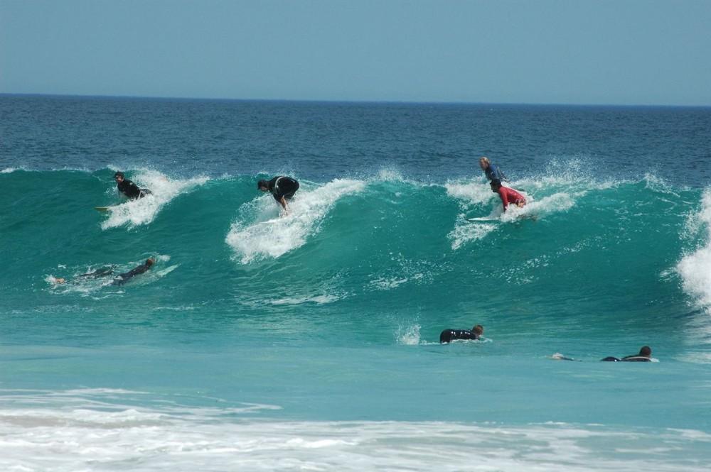 Semplicemente Surfisti