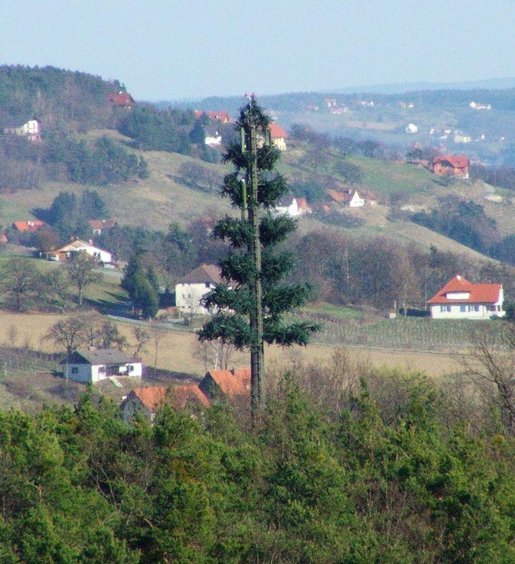 Sendebaum