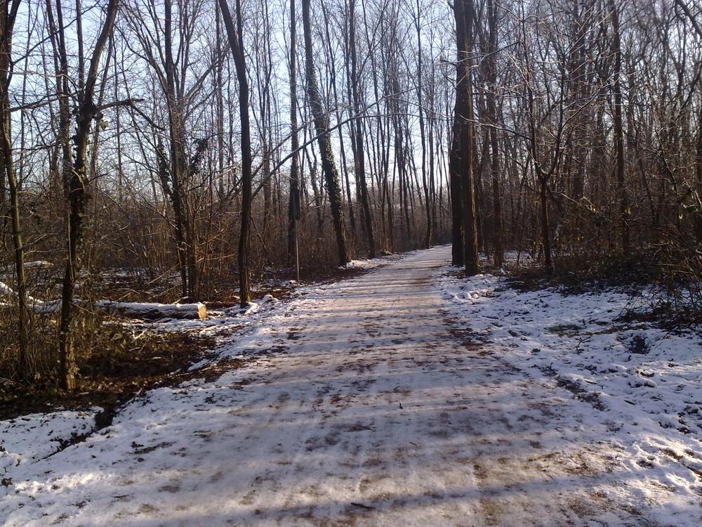 sentiero d'inverno