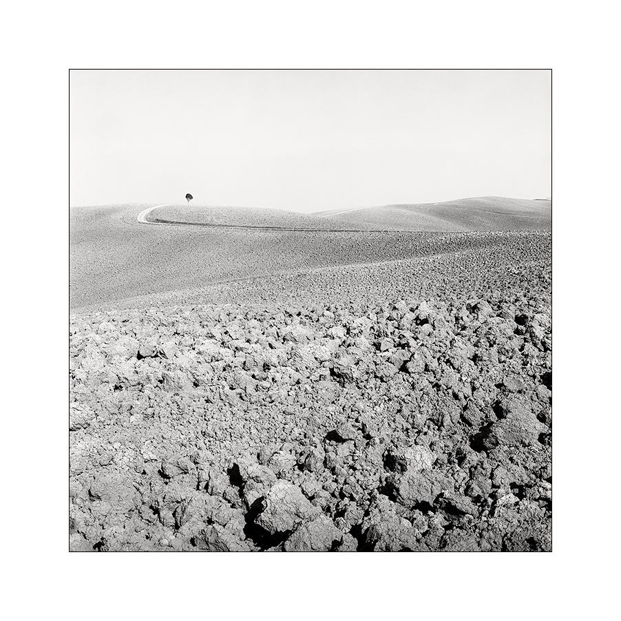 sentiero / toscana 2011