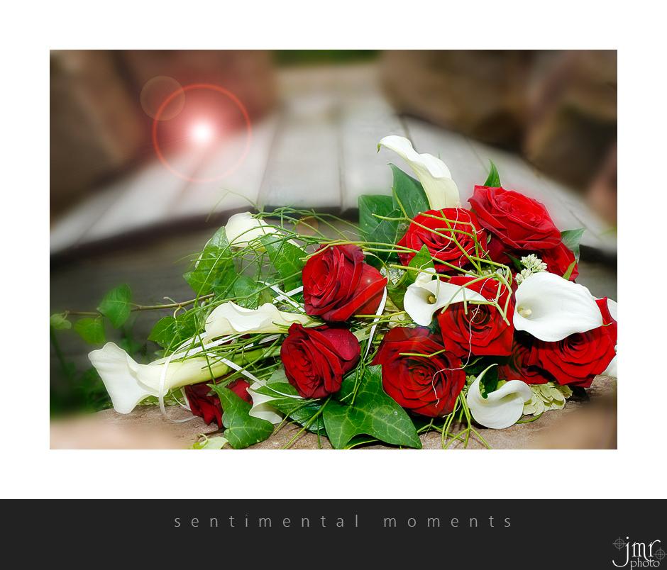 . : sentimental moments : .