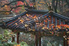 SEOUL Secret Garden 7