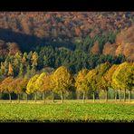 """""""September"""" im WESER BERGLAND- KALENDER 2012"""