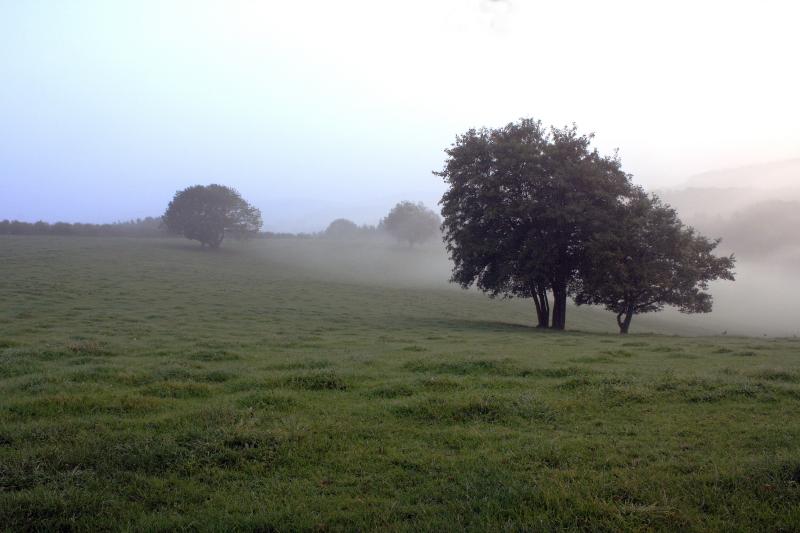 Septembermorgen_2