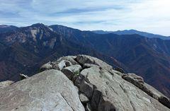 Sequoia Nationalpark'16