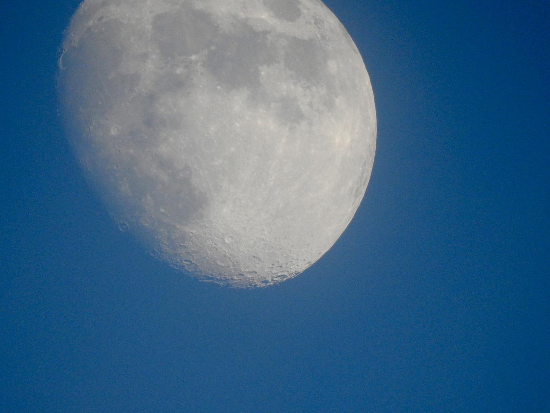 serata con Luna
