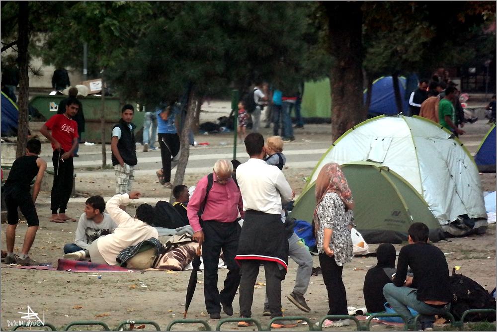 Serbie - Belgrade - Camp de réfugiés