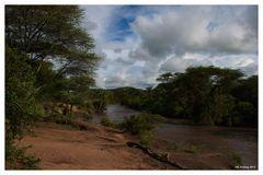 Serengeti (3)