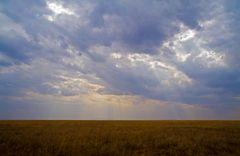 Serengeti Impressionen ~ 7 ~