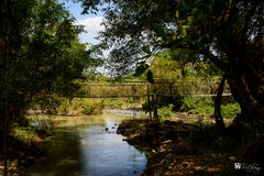 Serepok river in dry season