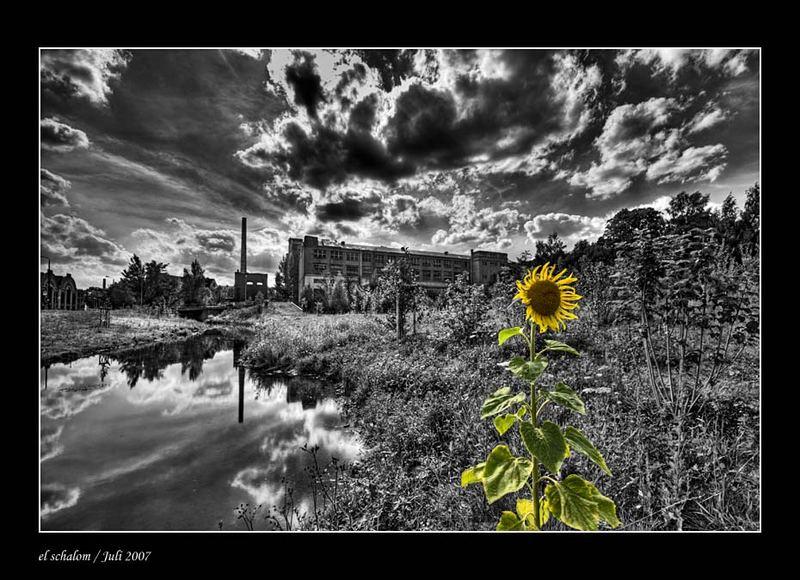 Serie: Industrie in Chemnitz - Teil I