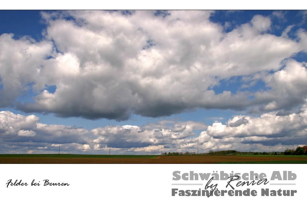 SERIE Schwäbische Alb - Felder bei Beuren (Farbe)