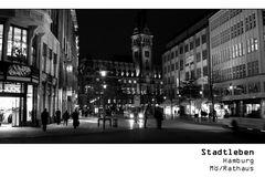 SERIE Stadtleben - Hamburg Mö Rathaus