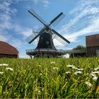 Seriemer Mühle in Ostfriesland