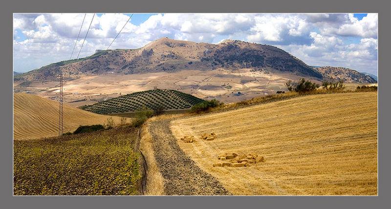 Serranía de Ronda 3