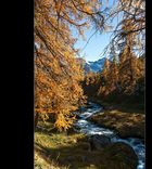 Sertig / Graubünden (2)