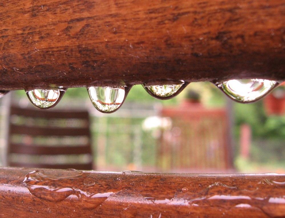 seßhafter Regen