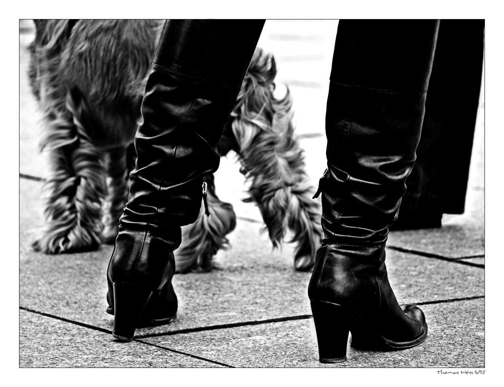 seven legs