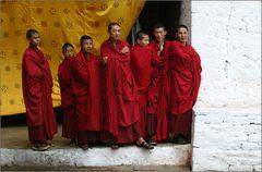 seven monks