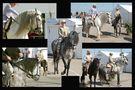 Sevilla lässt grüßen 2 von Eugen Auer