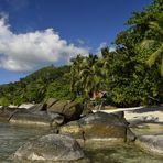 Seychelles Island - autentische Natur -