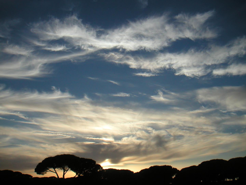 Sfumature celesti - Heavenly shades