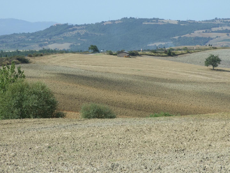 Sfumature delle Terre di Siena