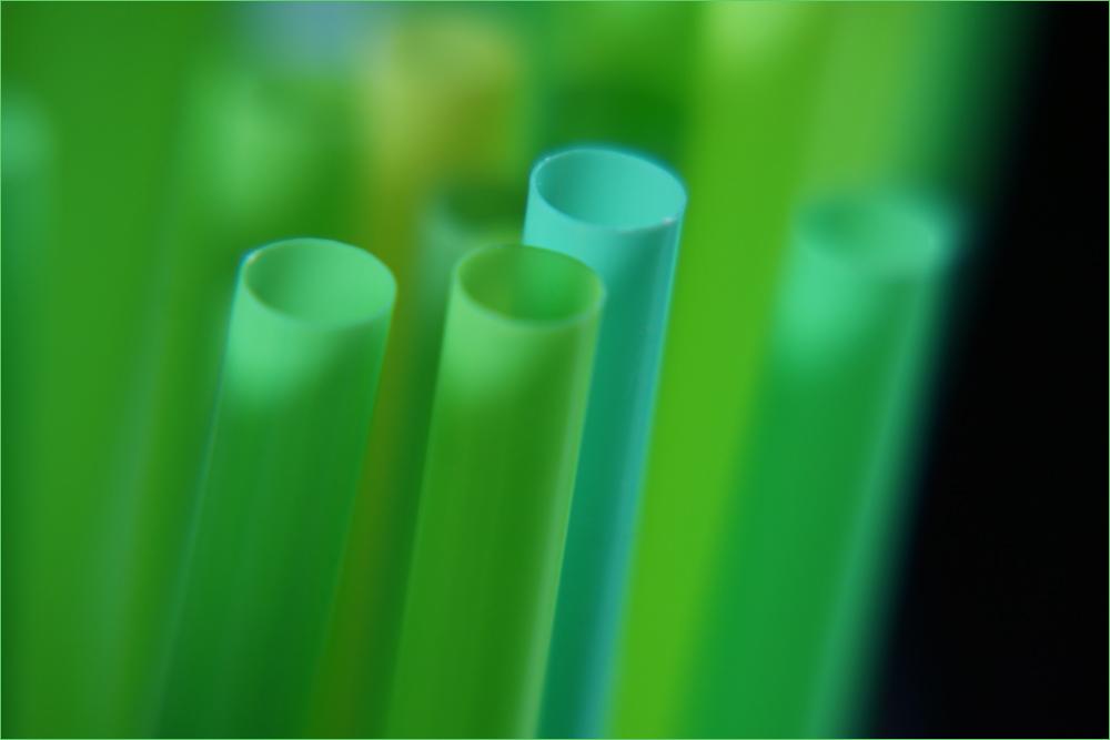 Shades of Green  2