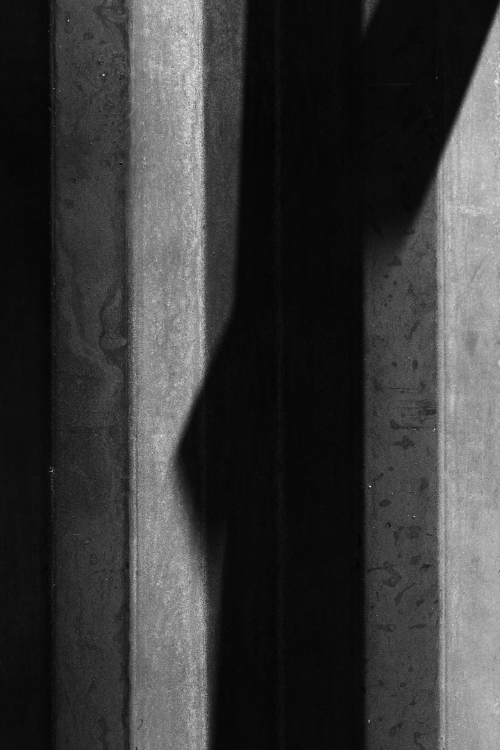 shadow-2