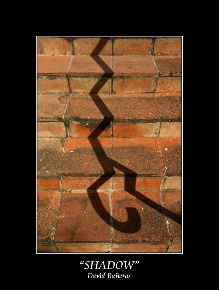 """""""shadow"""""""