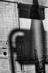 shadow harvest (# 1)