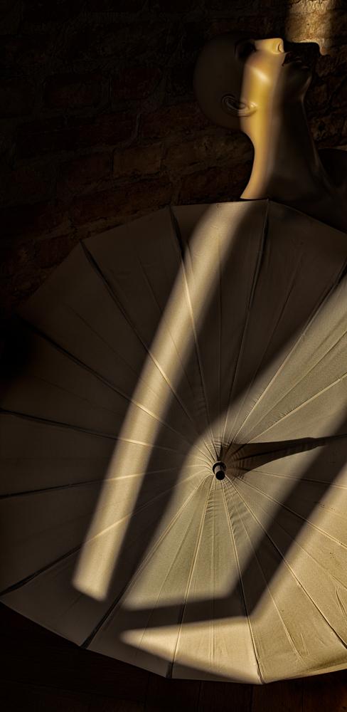 shadow harvest (#4)