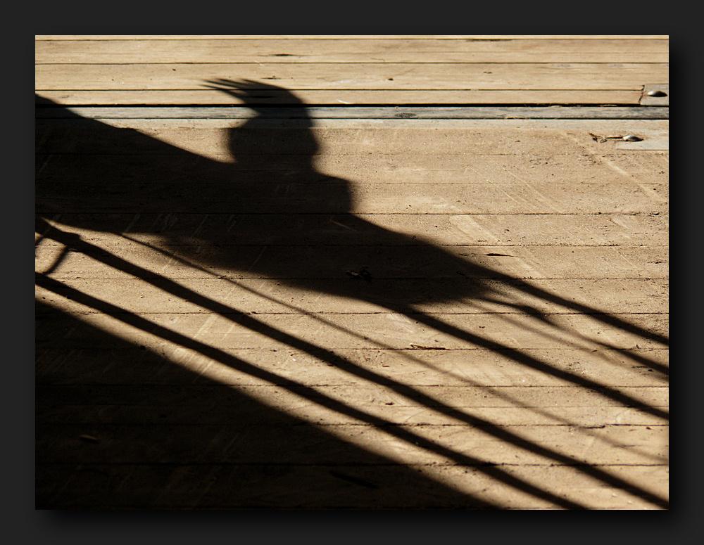 Shadow on a wood floor