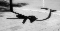 shadow poem