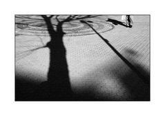 Shadows on a walk...