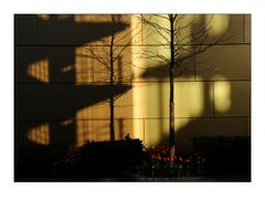 Shadows on the Wall #2