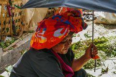 ...Shan Frau auf dem Markt in Nyaung Shwe...