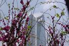 Shanghai-Pudong: Jin Mao Tower & World Financial Centre (im Bau)