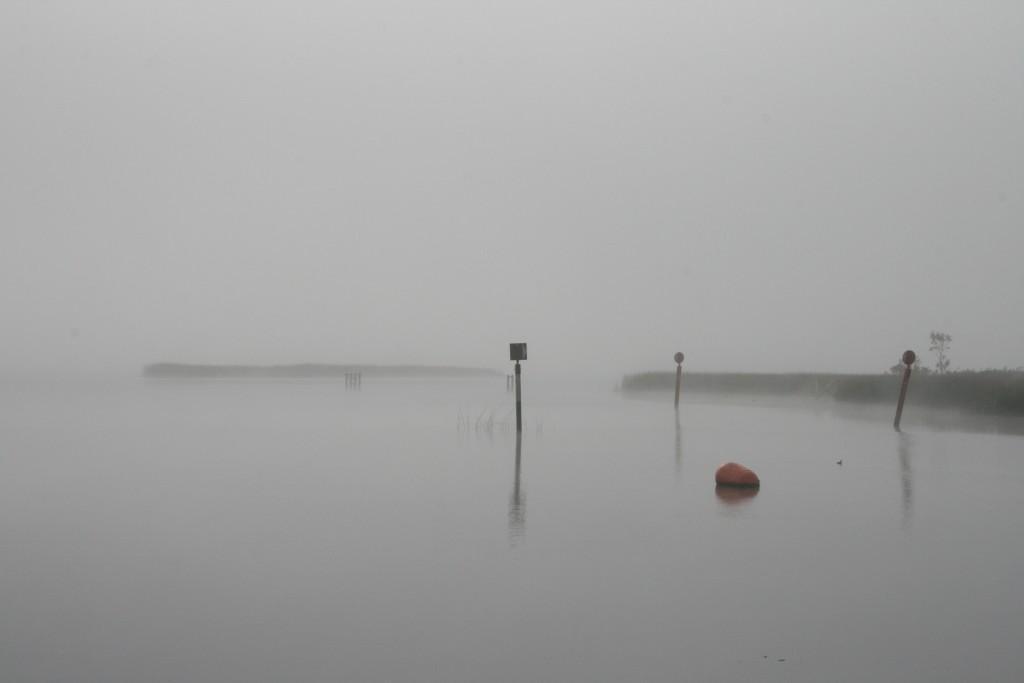 Shannon, Irland im Nebel