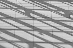 shaped shadows