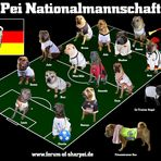 Shar Pei Nationalmannschaft 2010