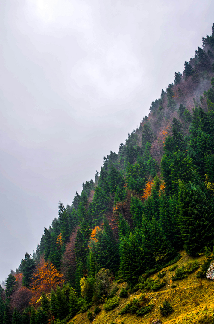 Sharr Mountain