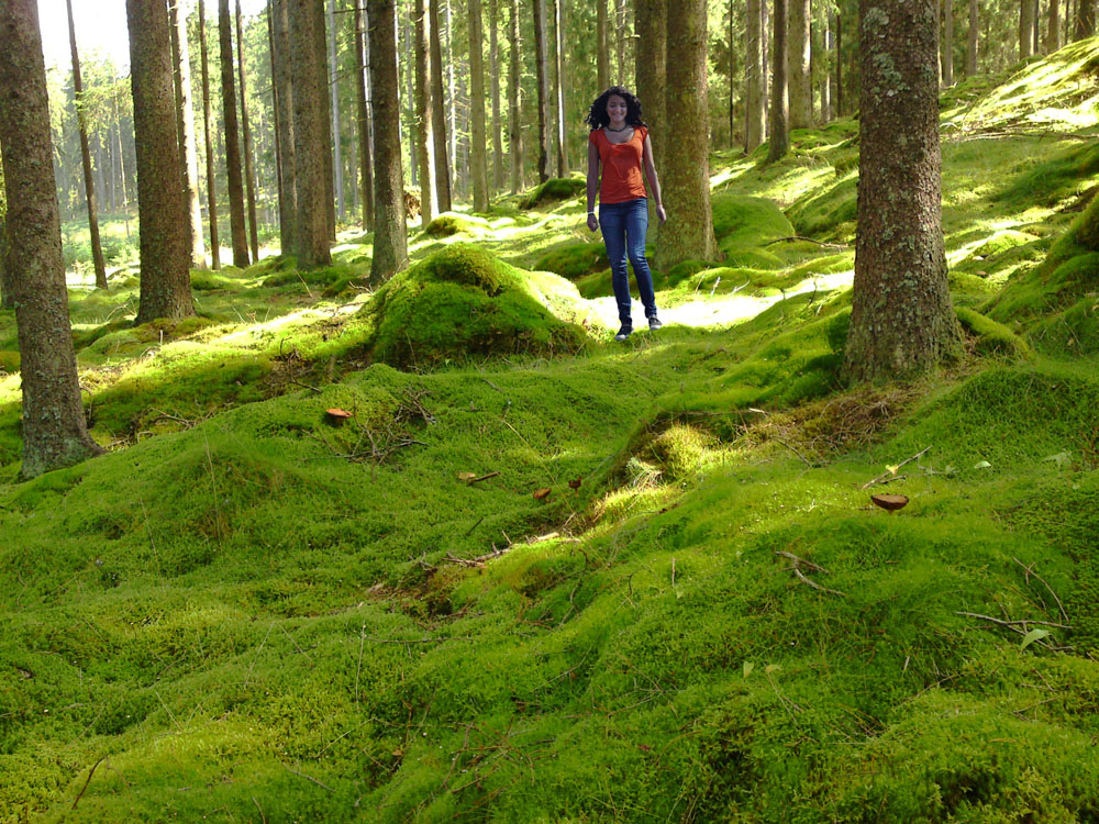 She Came Across the Mossy Woods