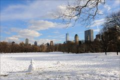 """Sheep Meadow"""