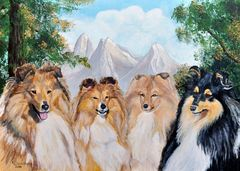 """Shelties from magic wood"""