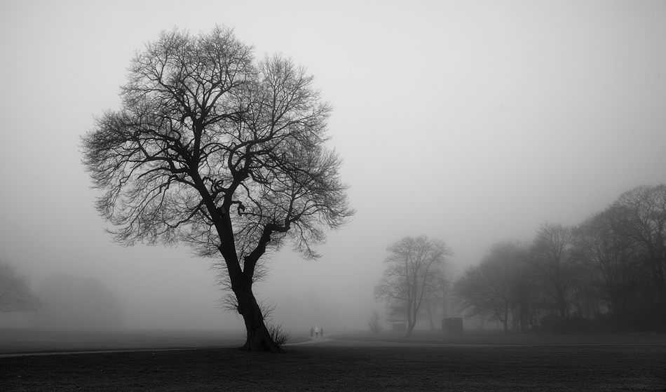 Sherdley Park