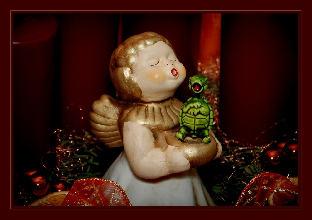 She's My Angel * (Green Turtle Version)