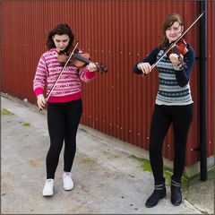 Shetland Fiddles