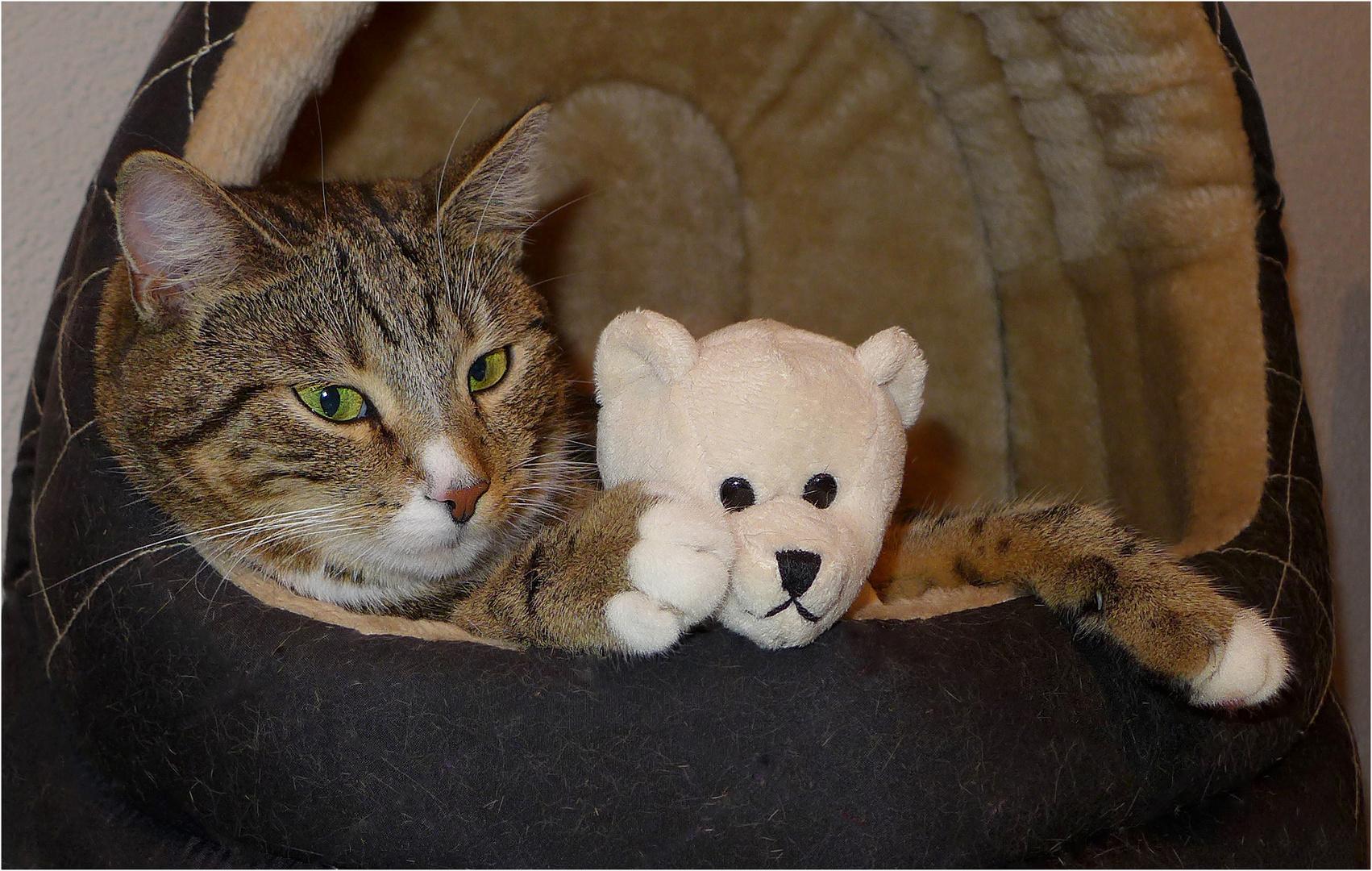 Shila mit ihrem Teddy