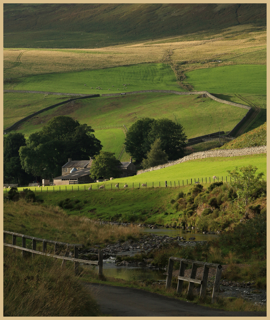 shillmoor farm 5